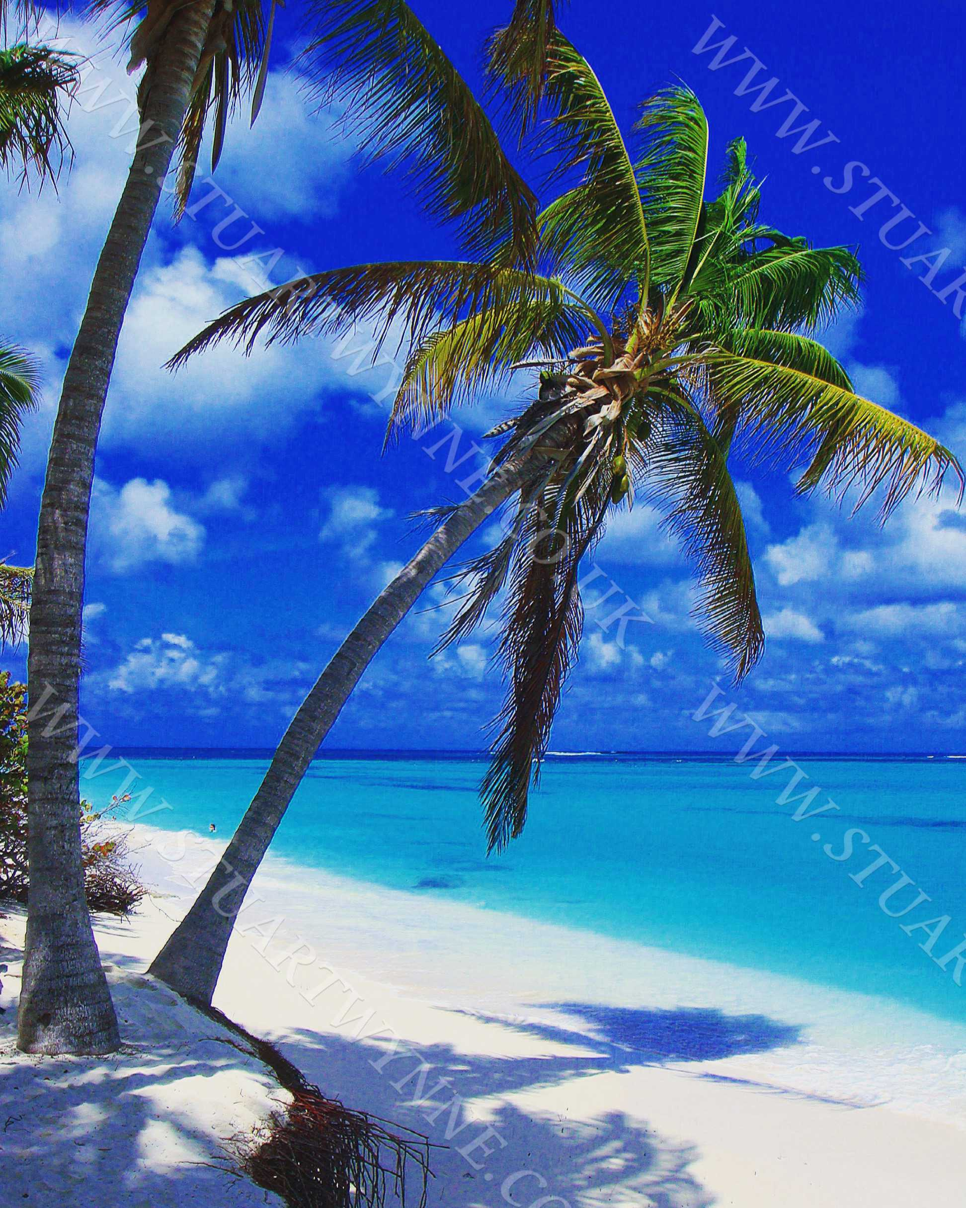 Shoal Bay East Palm Beach Anguilla