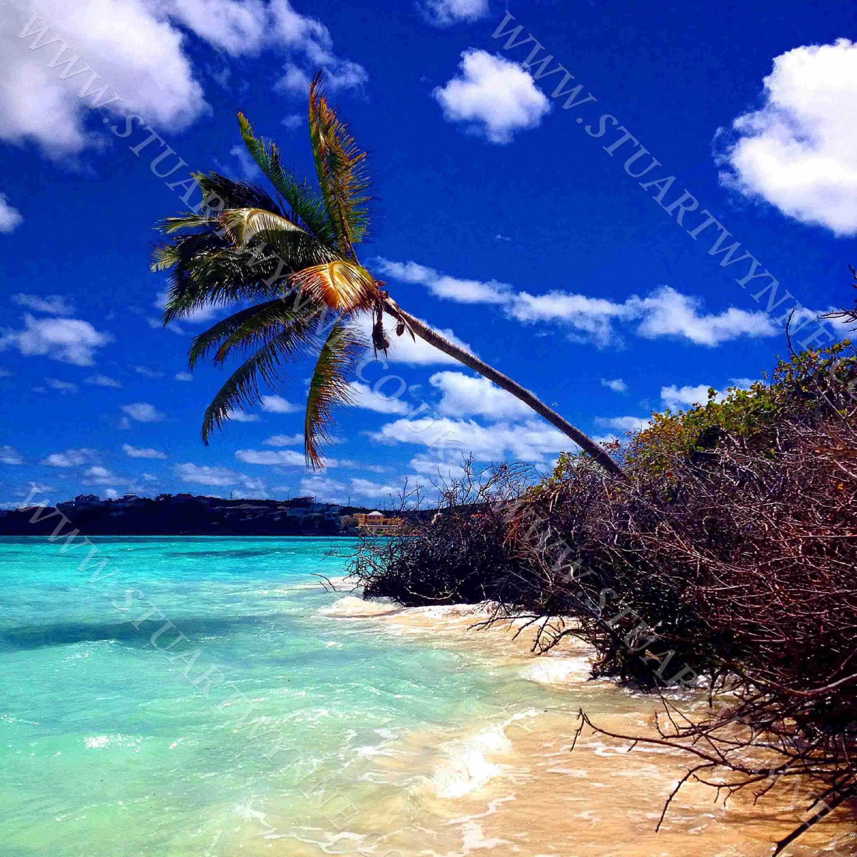 Shoal Bay East Palm Seas Anguilla