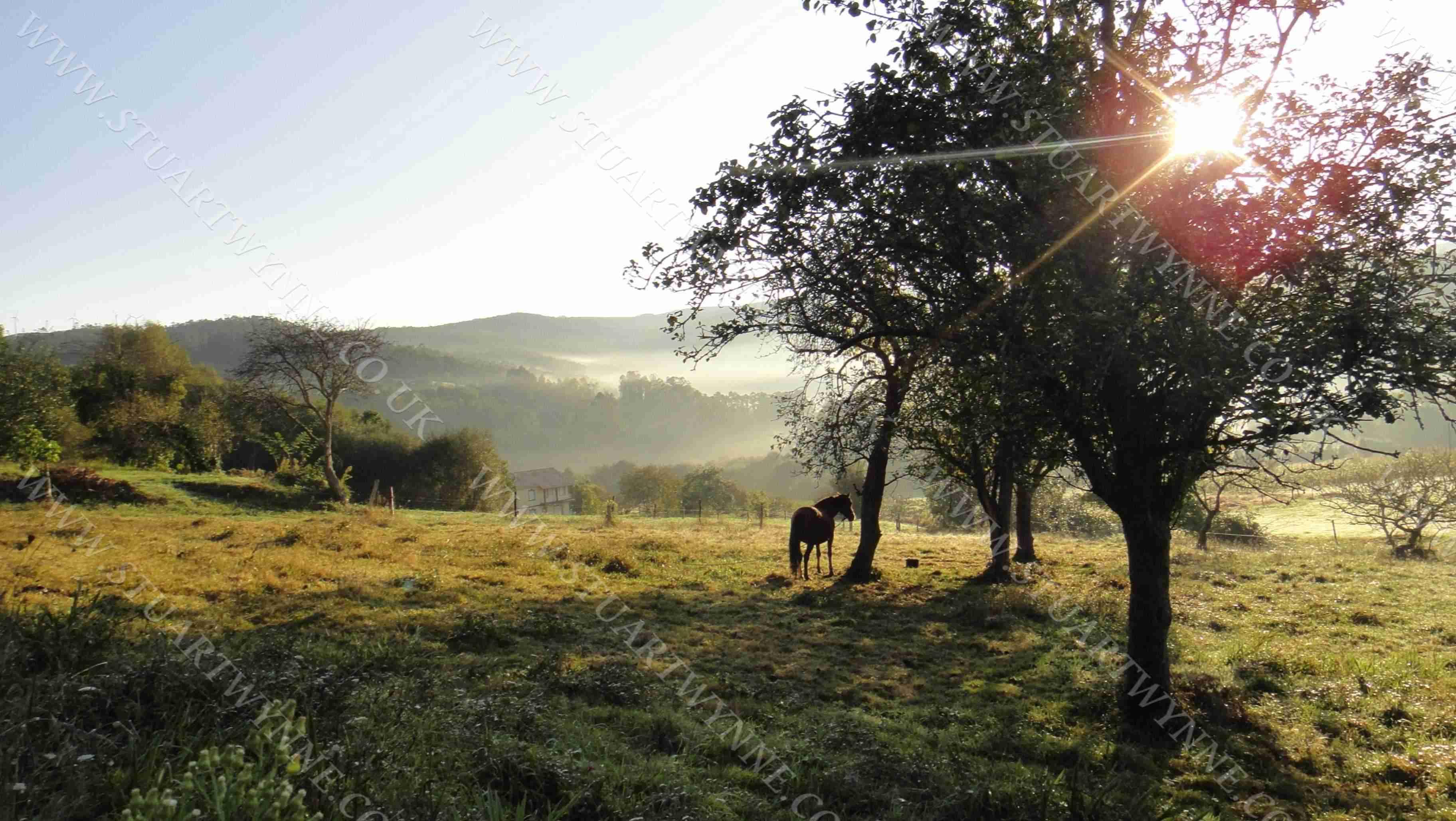 Galicia Landscape Couzadoiro