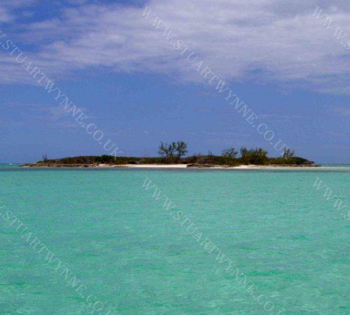 Bird Cay Andros Island Bahamas 2005